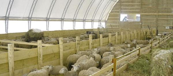 Каркасно-тентовые овчарни от компании TENTMAX